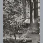 BohemianGrove196